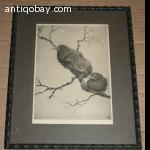 Old Bird print 4